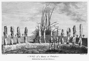 Kealakekua_Bay_heiau_illustration